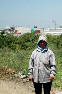 تقرير خاص عن الوضع البيئي في مدينة طولكرم