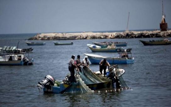 """""""الصيد الممنوع"""" يفتك بالأسماك والرقابة تصرف النظر"""
