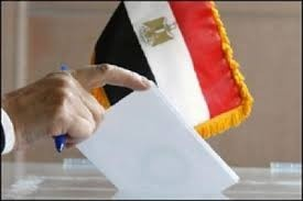 Transparency International to observe constitutional referendum in Egypt